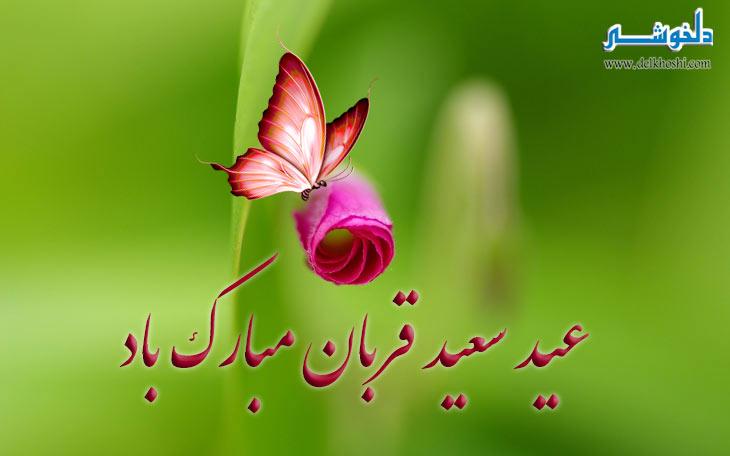 عید قربان تصاویر زیبا