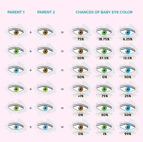رنگ چشم کودک، رنگ چشم بچه